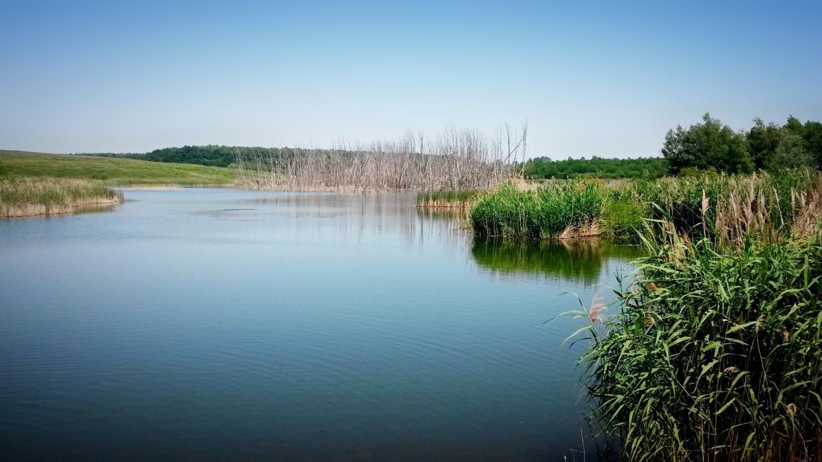 l_0-1-2 Radverleih Dübener Heide – Neuhäuseer See, Petersroda